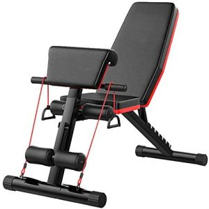 Adjustable Workout Exercise Weight Bench Equipment for Home Gym, Foldin